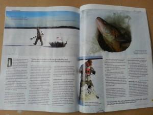 Artikel om Ismete efter gös fiskeguidning fiskeguide www.fishguide.se