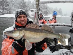 FishBrain Johan Attby B